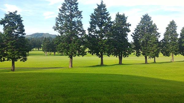 美しいゴルフ場です